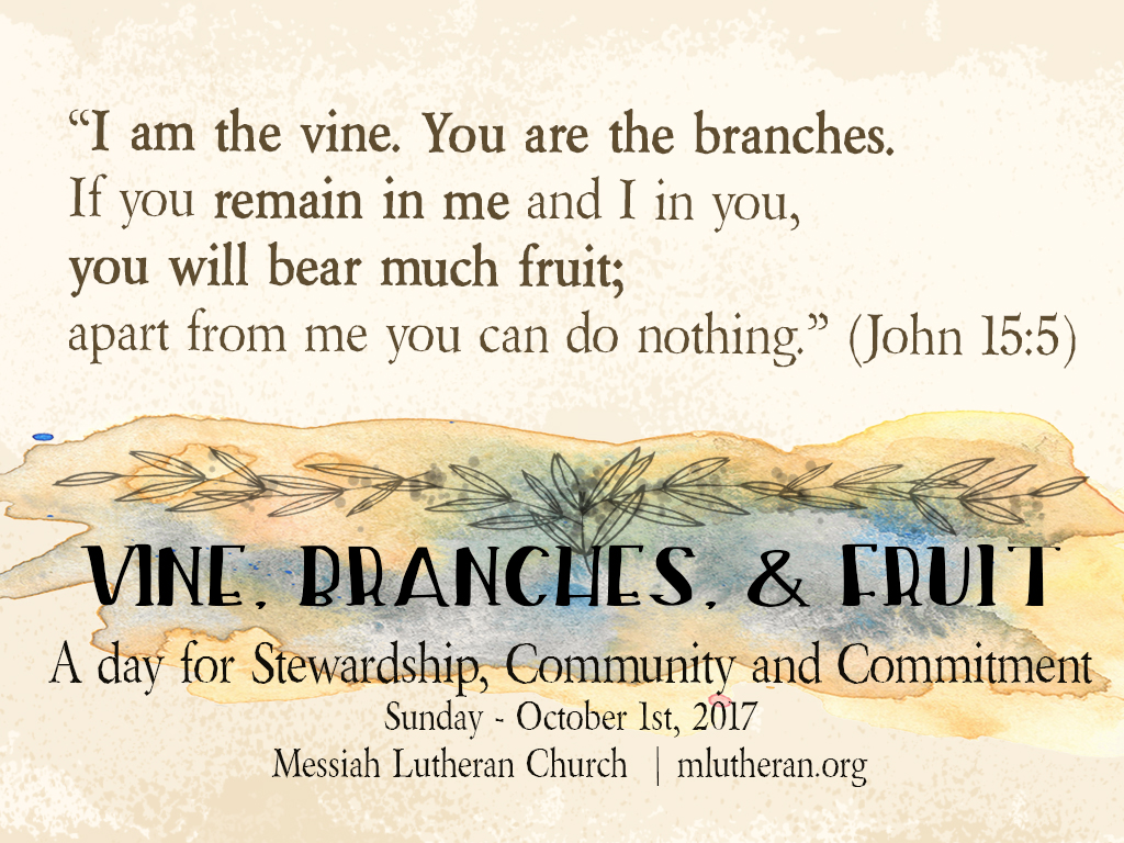 The Vine, The Branches and the Fruit.